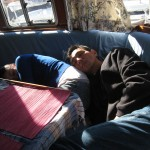 Napping is contagious. If you can't beat 'em, join 'em!